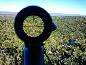 Types of Rifle Scopes - Choose The Right One From The Variety Range