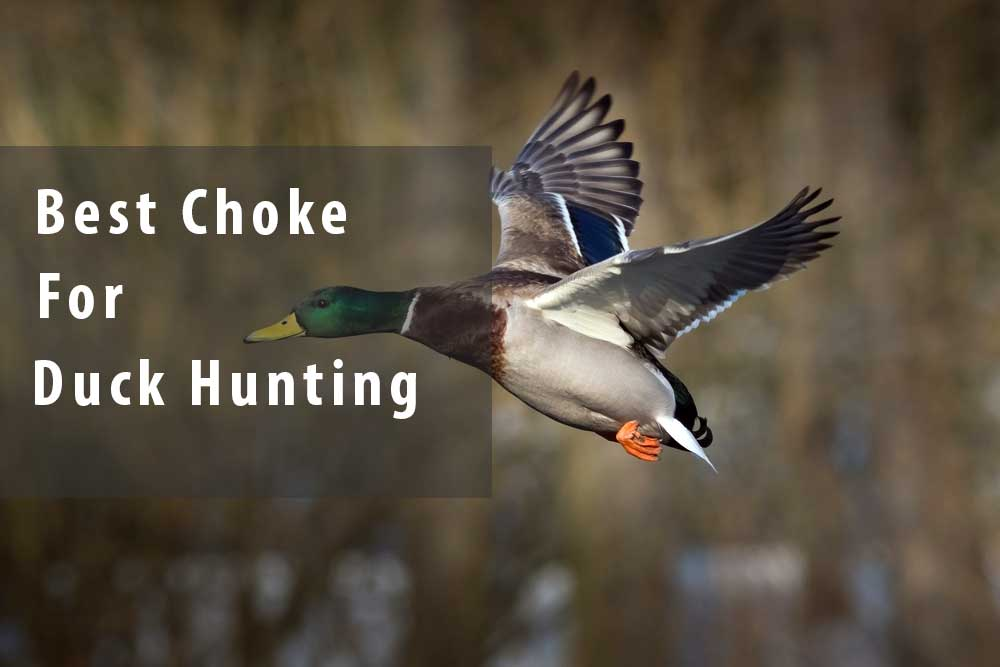 Best choke for duck hunting reviews