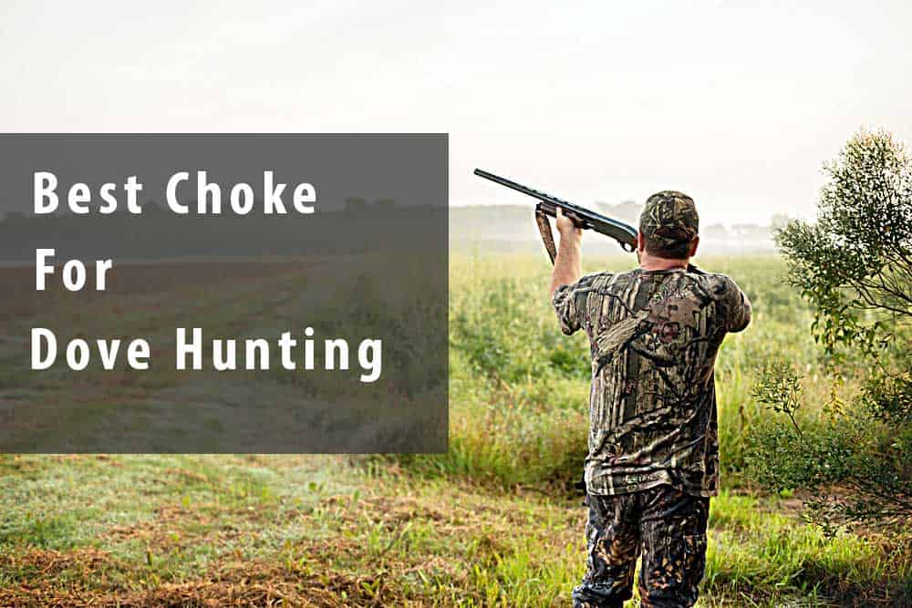 best dove hunting choke