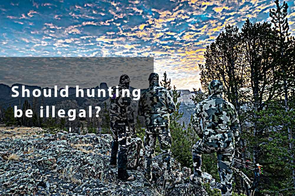 should hunting be illegal