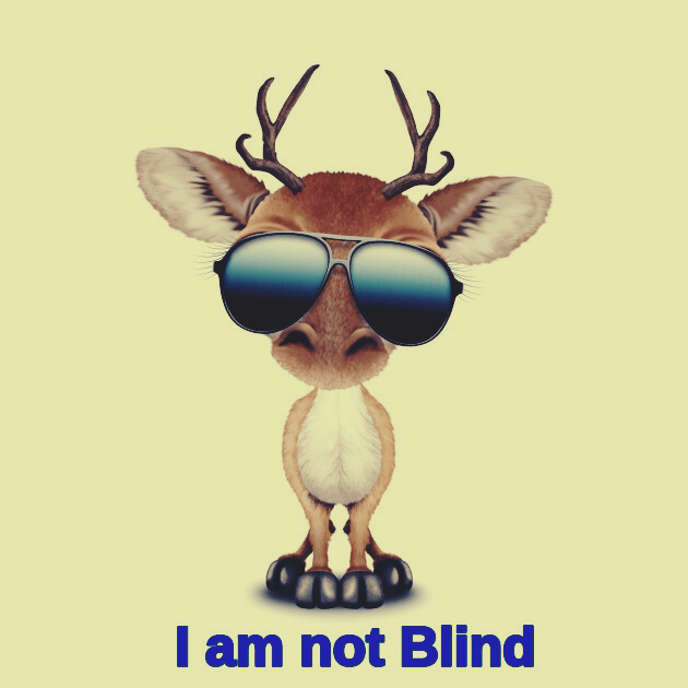 what do you call a deer with no eyes