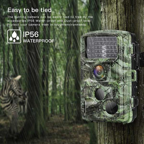 Best Trail Cameras For Hunters